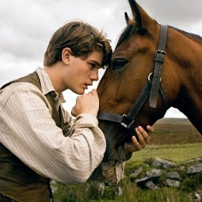 warhorse boy and horse